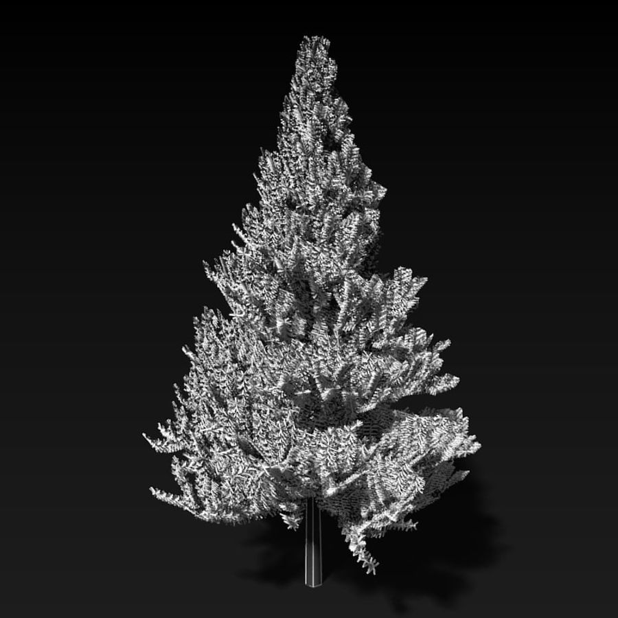 Pine Tree royalty-free 3d model - Preview no. 7