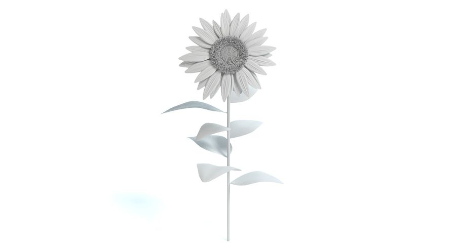 Sunflower royalty-free 3d model - Preview no. 9