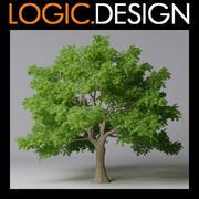 枫树 3d model
