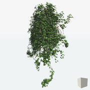 Multiple IVY shapes 3d model