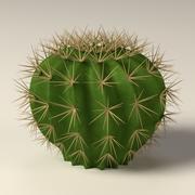 cactus02 3d model