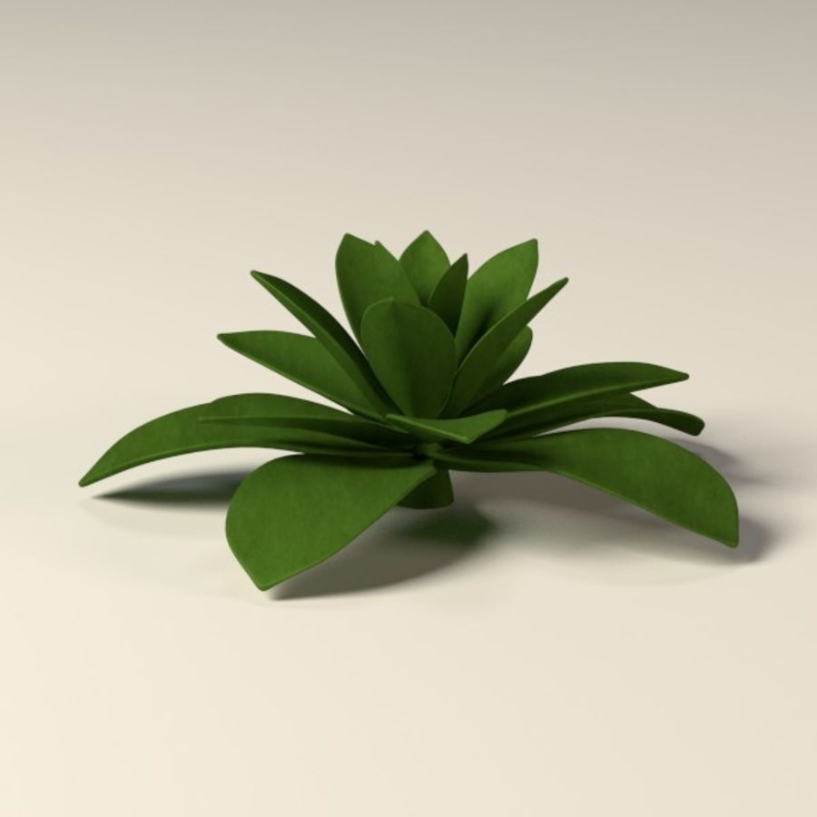 suculents royalty-free 3d model - Preview no. 7