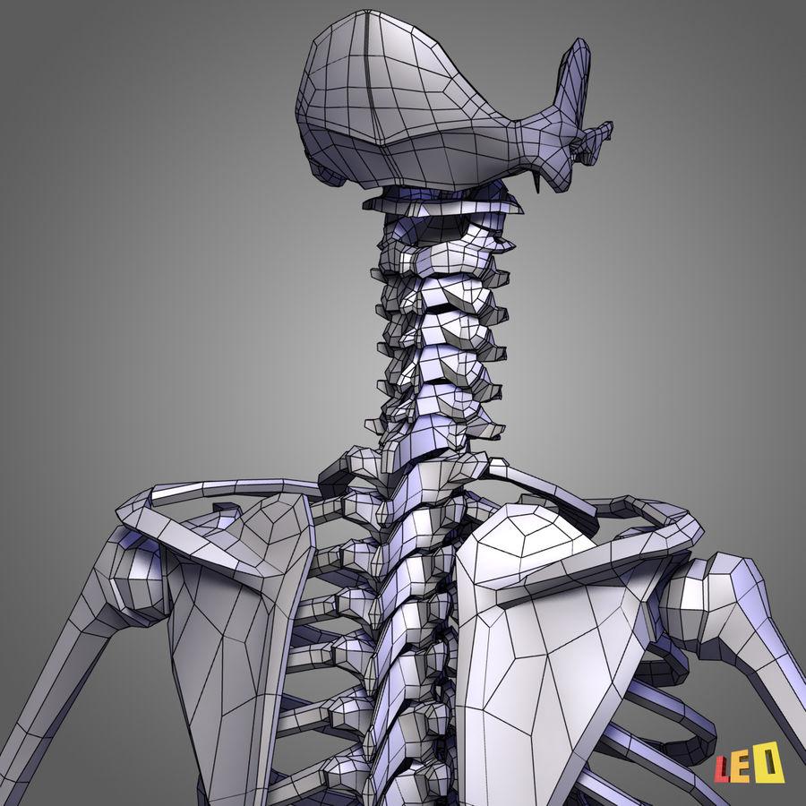 인체의 몸통 근육 royalty-free 3d model - Preview no. 16