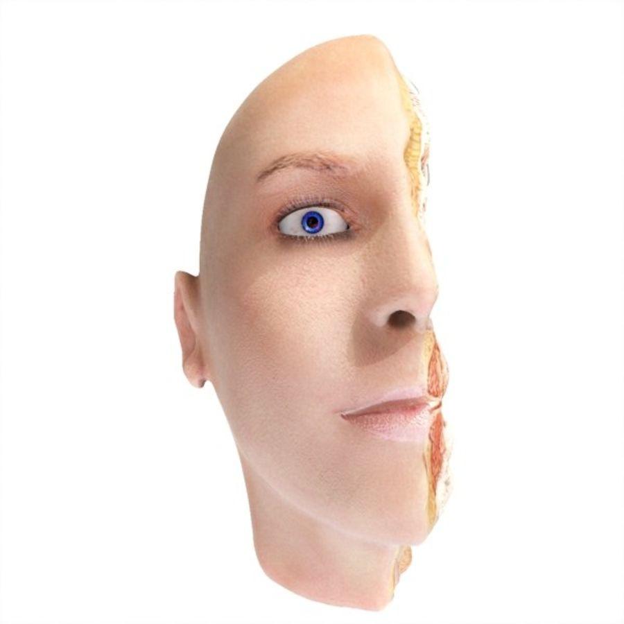 İnsan kafa yanal dilim royalty-free 3d model - Preview no. 4