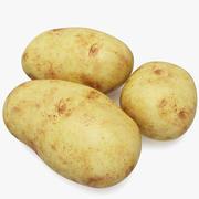 土豆 3d model