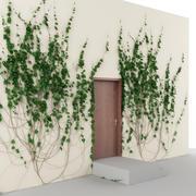 Klimop en deuren 3d model