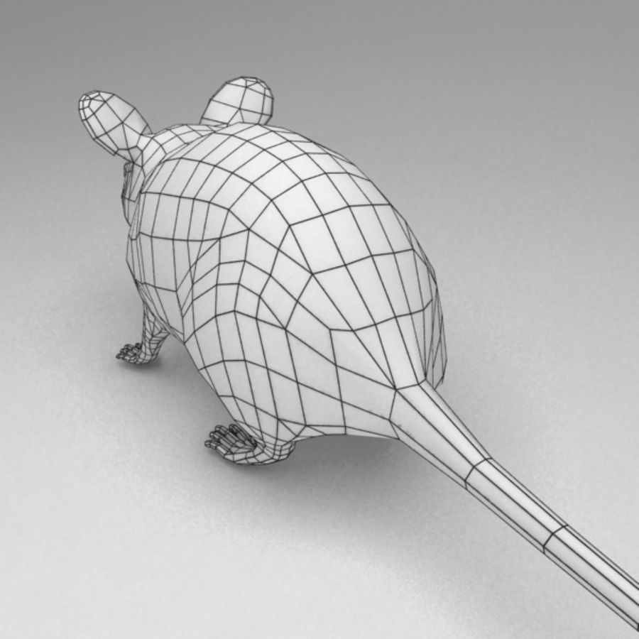 Mouse rigged royalty-free 3d model - Preview no. 11