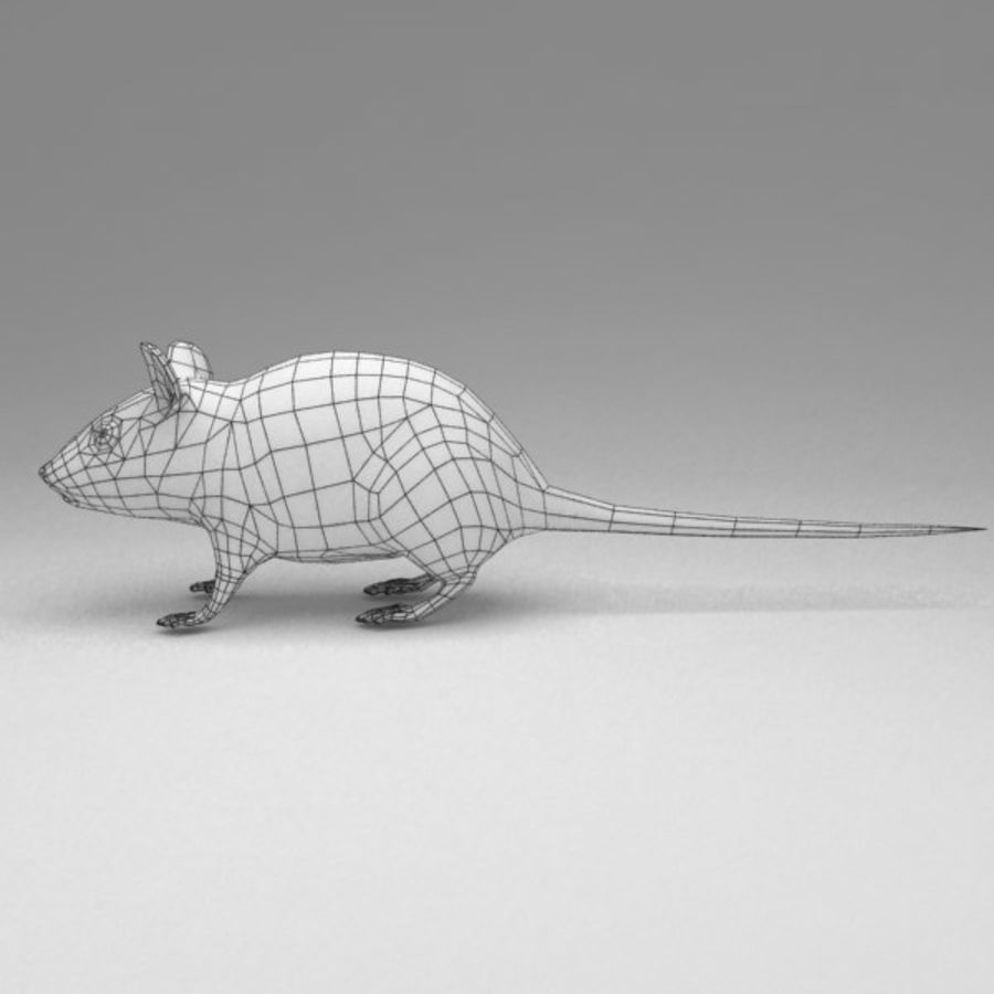 Mouse rigged royalty-free 3d model - Preview no. 12
