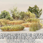 Afghanistan plants 3d model