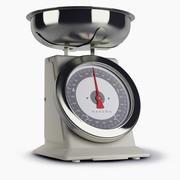 Scales Hanson 3d model