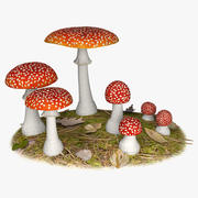 Mouche Agaric 3d model