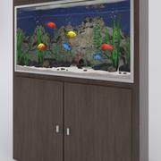 Akvarium med tropiska fiskar 3d model