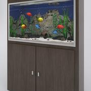 Aquarium with tropical fishes 3d model