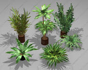Pack de plantes en pot (7 plantes en pots) 3d model