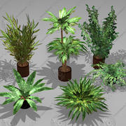 Potted Plant Pack (7 potted plant) 3d model