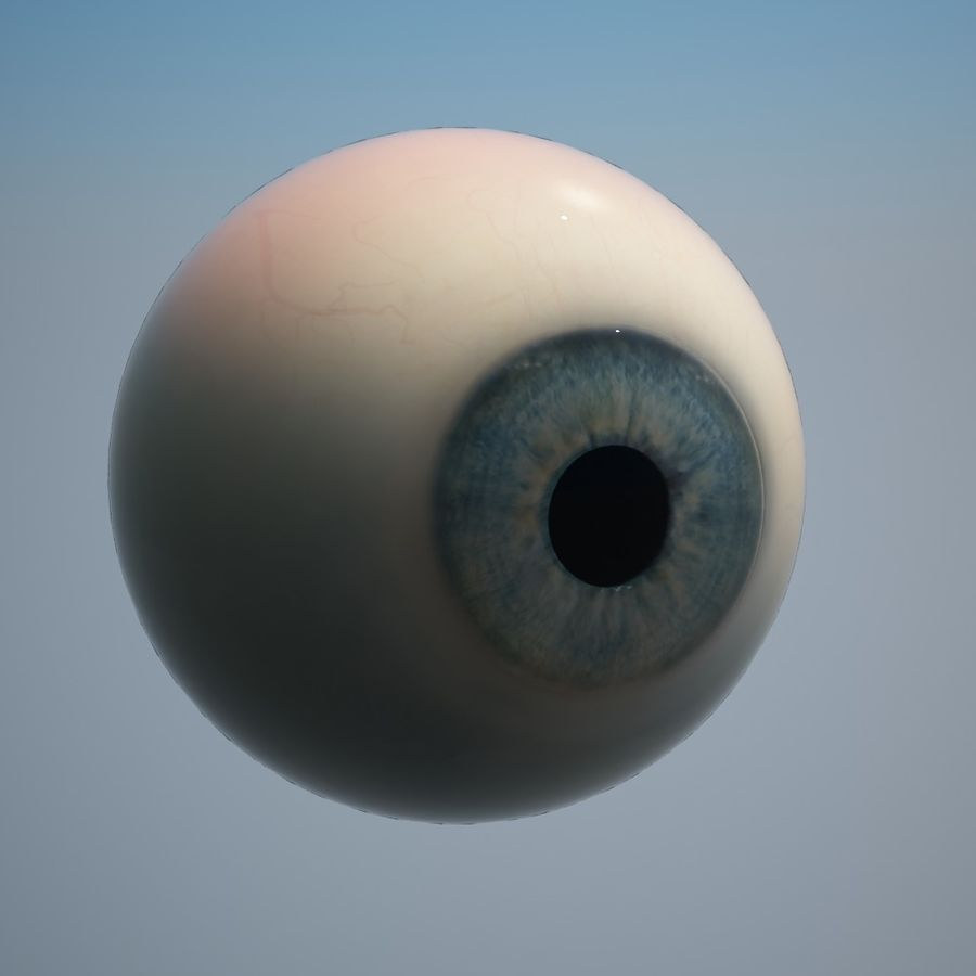 Human Eye royalty-free 3d model - Preview no. 4