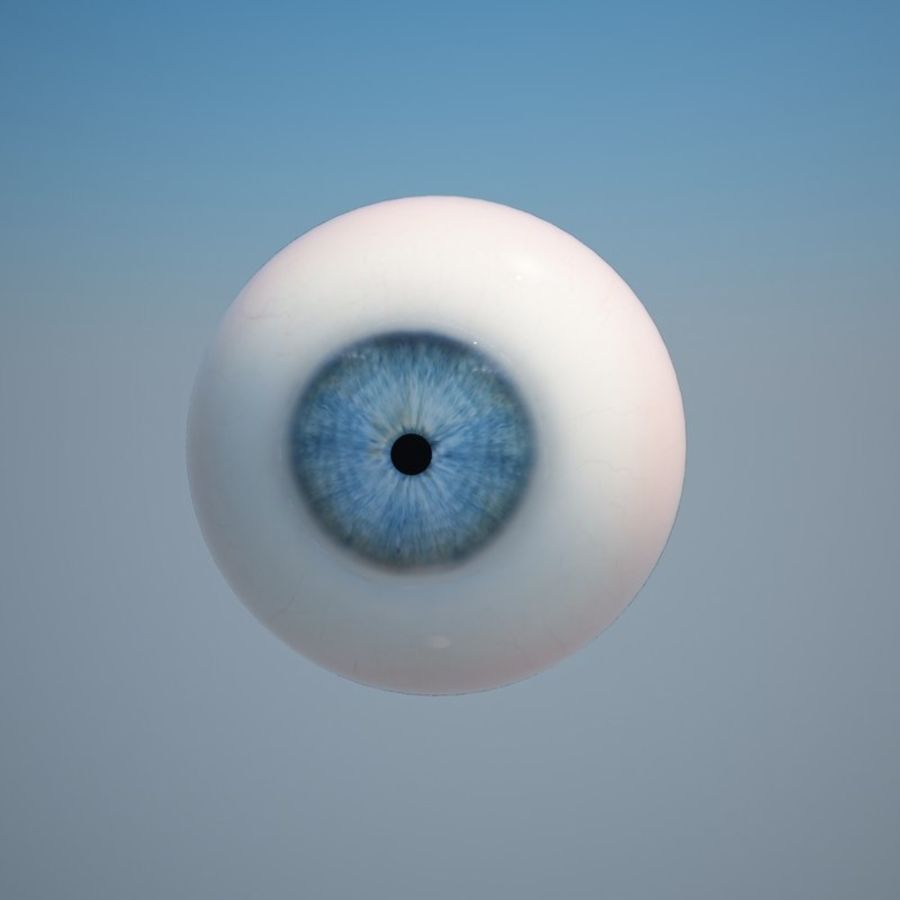 Human Eye royalty-free 3d model - Preview no. 9