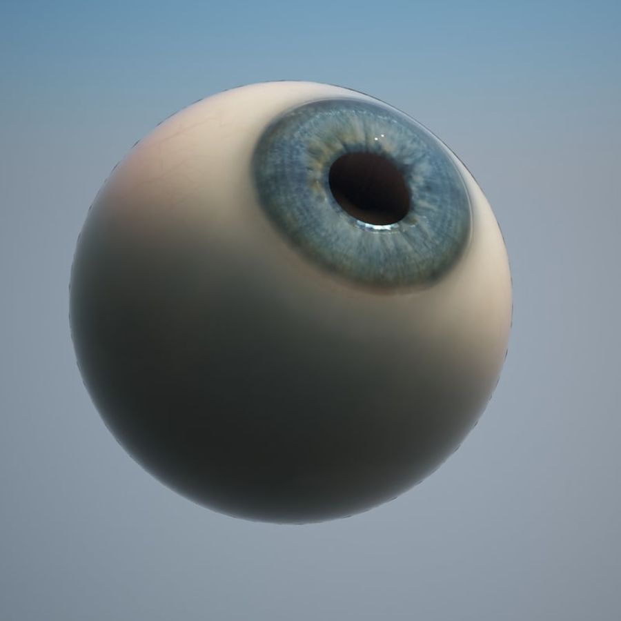Human Eye royalty-free 3d model - Preview no. 2