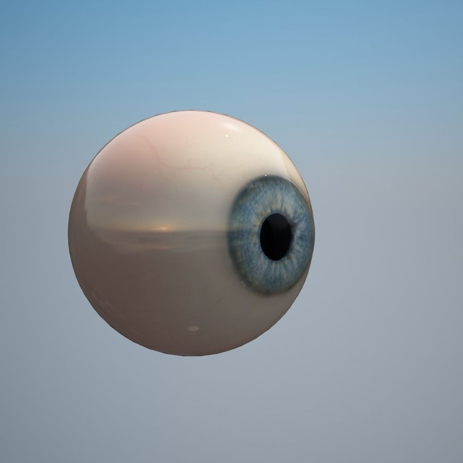 Human Eye royalty-free 3d model - Preview no. 10