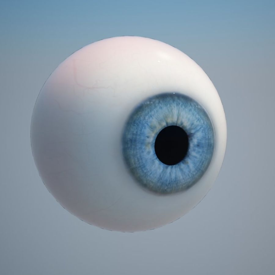 Human Eye royalty-free 3d model - Preview no. 6