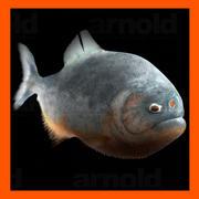 食人鱼 3d model