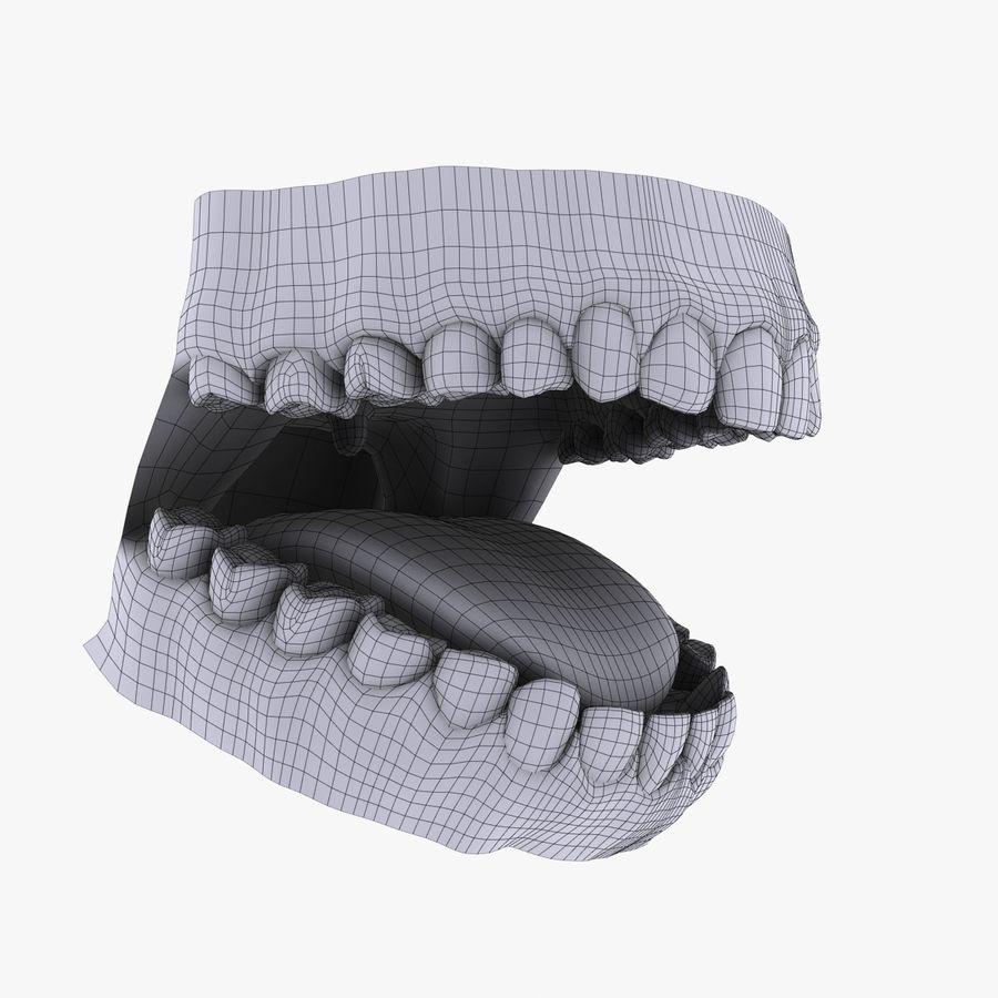 人类的牙齿 royalty-free 3d model - Preview no. 10