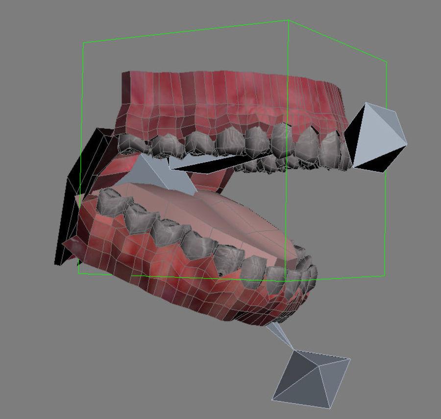 人类的牙齿 royalty-free 3d model - Preview no. 5