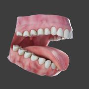 Ludzkie zęby 3d model