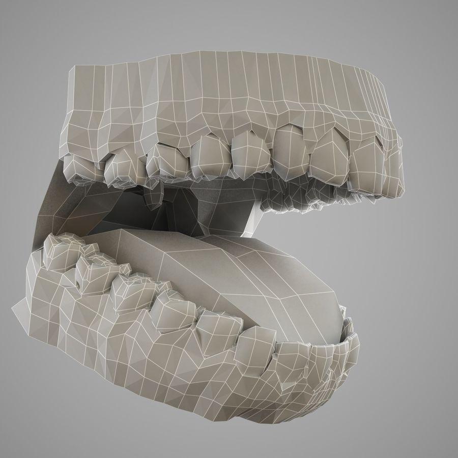 人类的牙齿 royalty-free 3d model - Preview no. 9