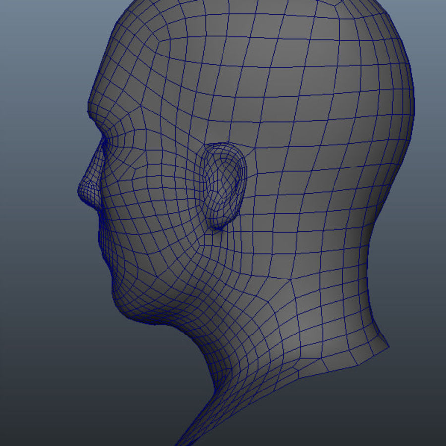 Основная мужская голова royalty-free 3d model - Preview no. 7