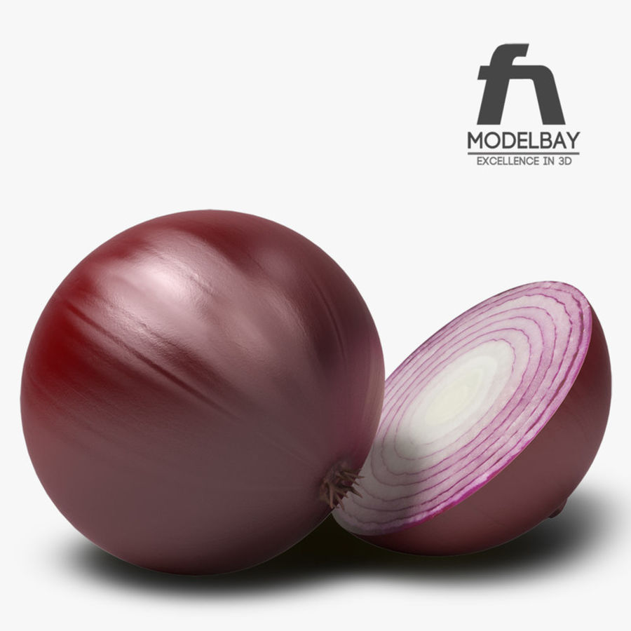 Onion royalty-free 3d model - Preview no. 4