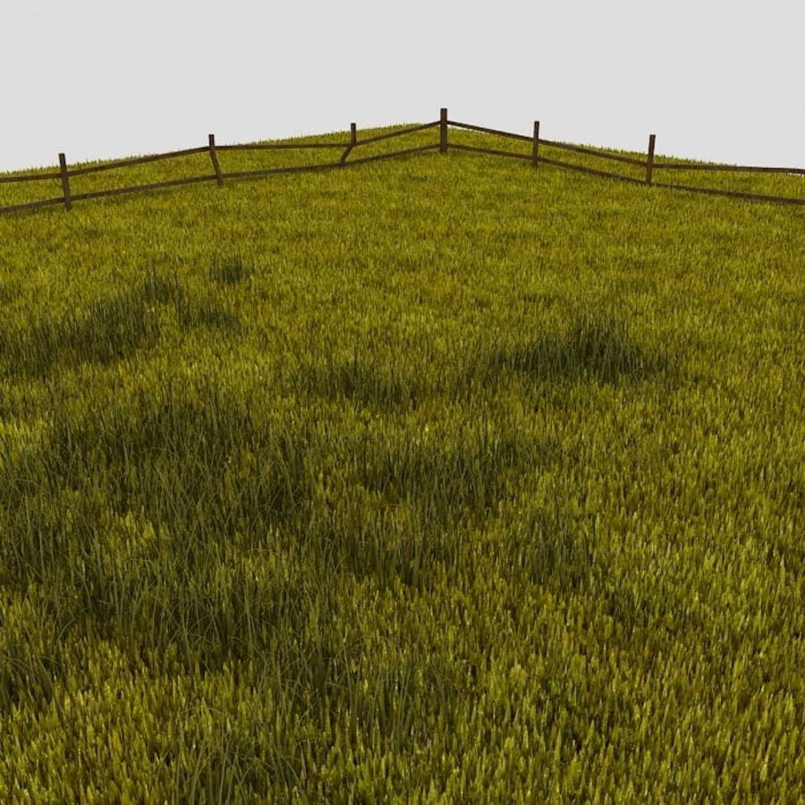 Grasveld royalty-free 3d model - Preview no. 1