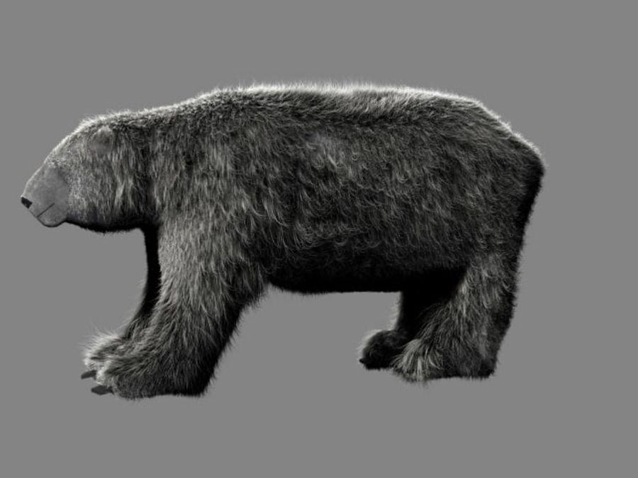 Urso polar royalty-free 3d model - Preview no. 3