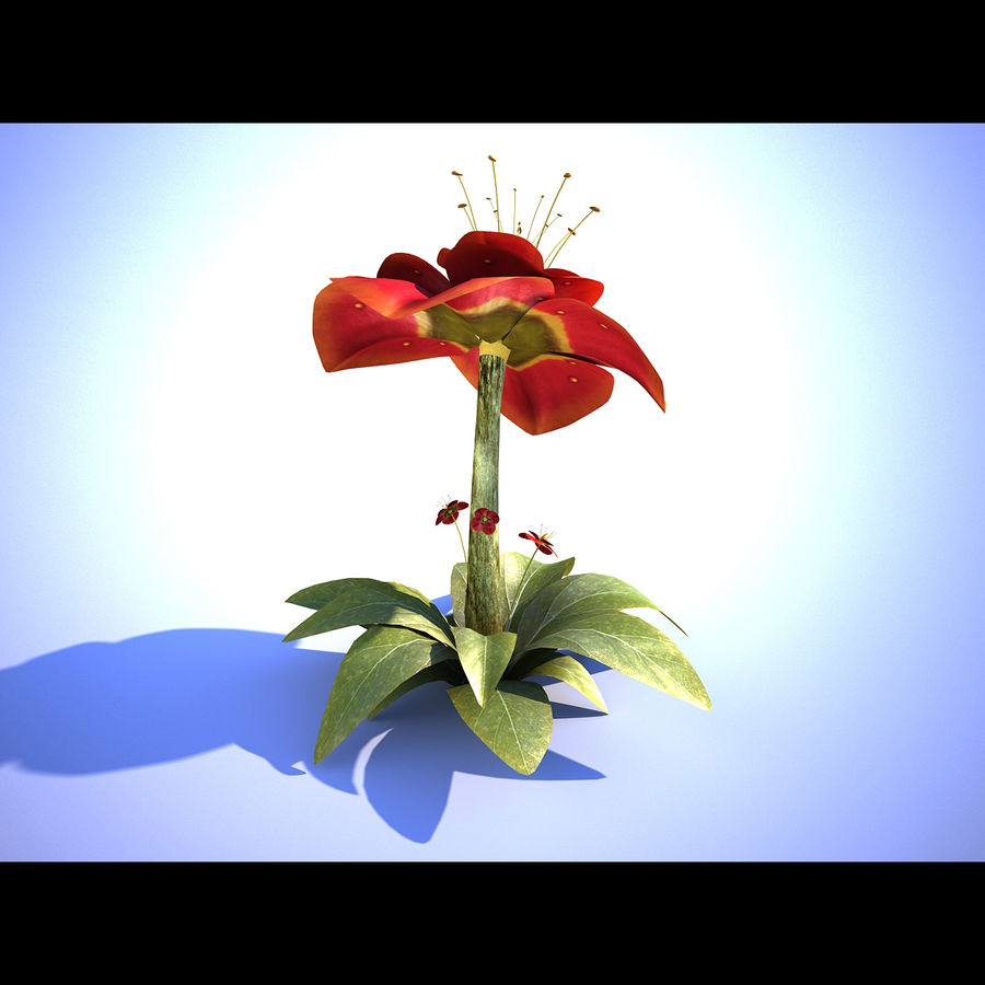 Red Flower royalty-free 3d model - Preview no. 2