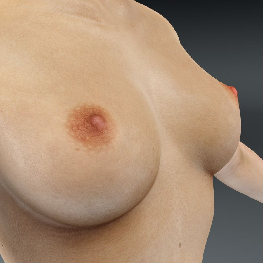 Anatomie féminine mince royalty-free 3d model - Preview no. 13