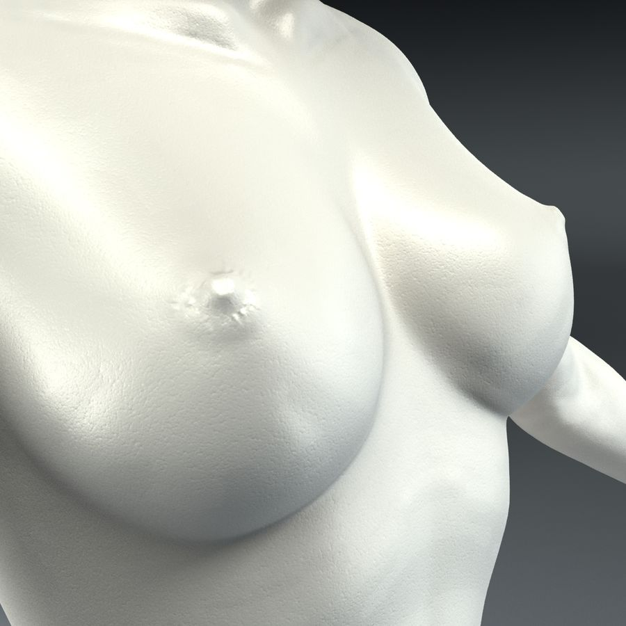 Anatomie féminine mince royalty-free 3d model - Preview no. 14
