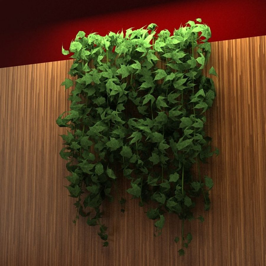 Wall hanging plant - A royalty-free 3d model - Preview no. 6