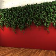 Pianta da appendere a parete - A 3d model