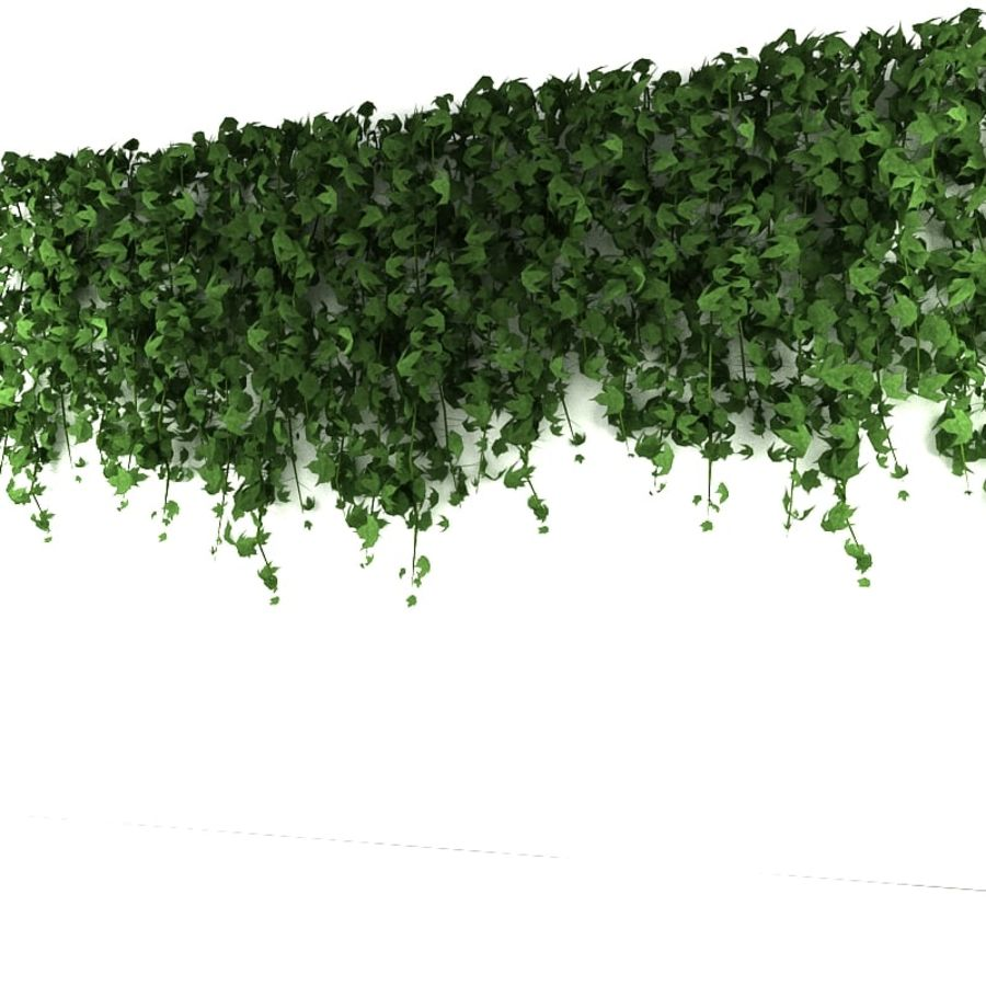 Wall hanging plant - A royalty-free 3d model - Preview no. 1