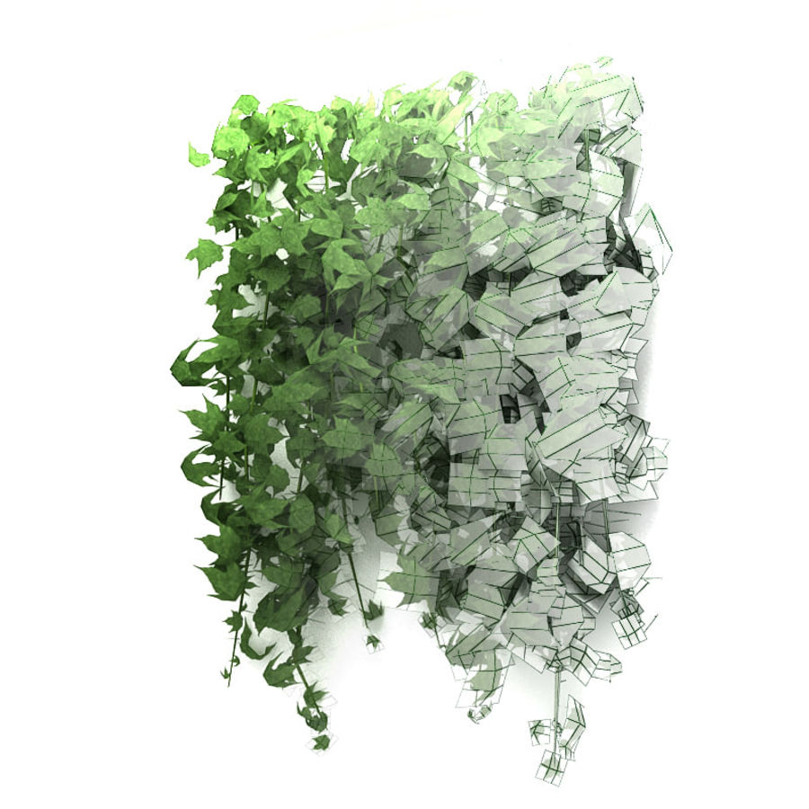 Wall hanging plant - A royalty-free 3d model - Preview no. 5