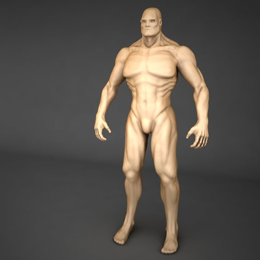 corpo humano royalty-free 3d model - Preview no. 3