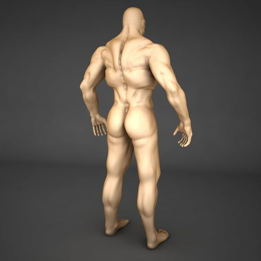 corpo humano royalty-free 3d model - Preview no. 4