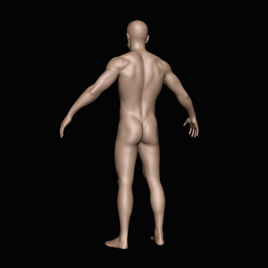 İnsan vücudu royalty-free 3d model - Preview no. 3