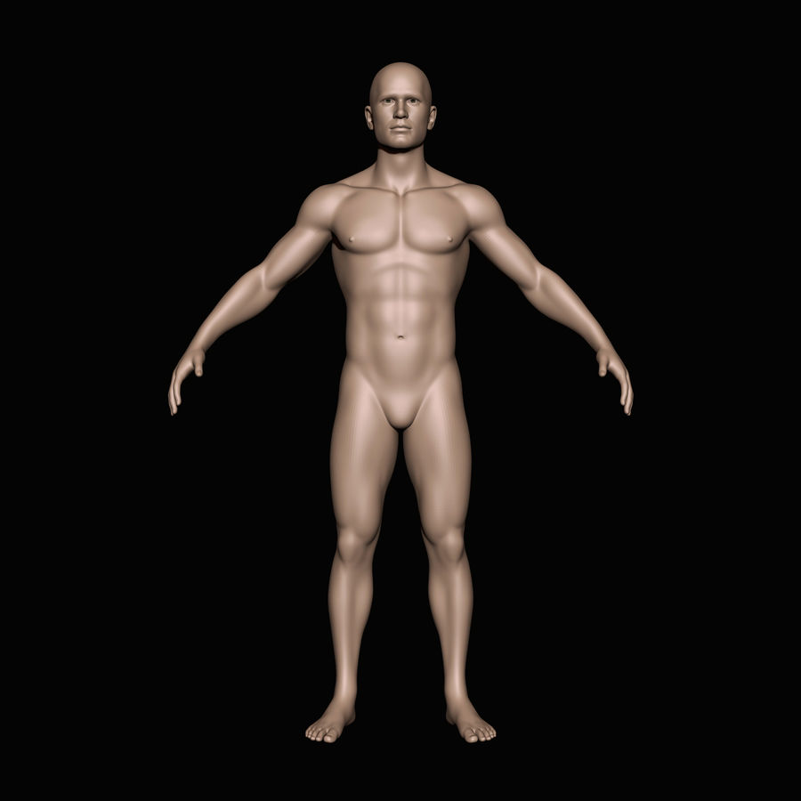 İnsan vücudu royalty-free 3d model - Preview no. 1