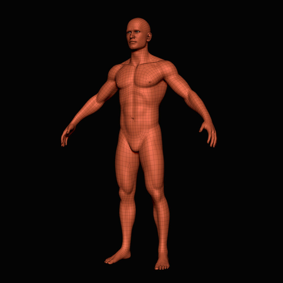 İnsan vücudu royalty-free 3d model - Preview no. 7