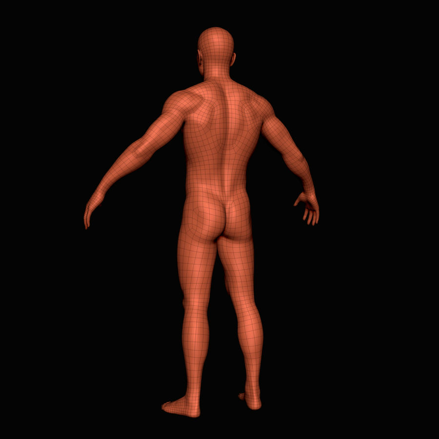 İnsan vücudu royalty-free 3d model - Preview no. 8