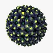 Rotavirus 3d model