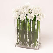 Vaso de flores brancas 3d model