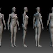 Body_woman 3d model