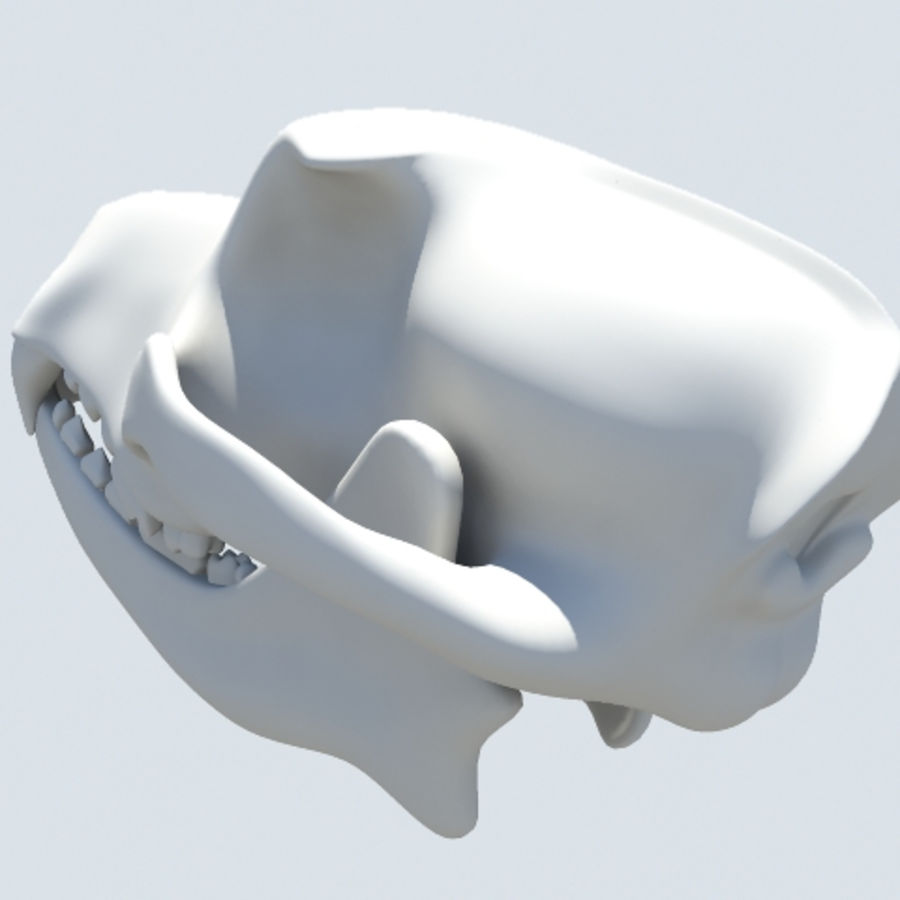 dog skull royalty-free 3d model - Preview no. 5